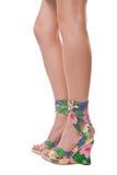 Fine legs Stock Images
