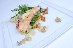 Fine meal salmon mozzarella. Salmon fillet baked with mozzarella and a nut crust, fragranced with herbs and served with chanterelles from the forest, a bed of Stock Image