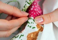 fine needlework Royaltyfri Fotografi