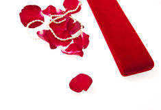 Fine pearl beads and red roses petals Stock Images