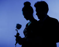 Fine photo of the couple in love Royalty Free Stock Images