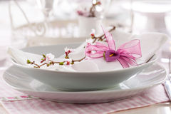 Fine place setting Royalty Free Stock Photo