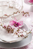 Fine place setting Royalty Free Stock Photography