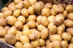 Fine potatoes Stock Photos