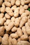 Fine potatoes Stock Photography