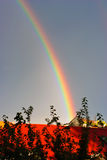 Rainbow over roofs. Fine rainbow over the red roof shined with the sun Stock Photo
