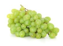 Fine ripe green grapes Stock Image