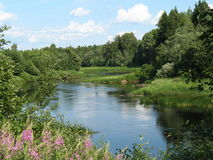 The fine river. The fine image of small river in the Russian solitude Stock Photos