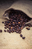 Fine roasted coffee beans Stock Photos