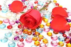 Fine rose Royalty Free Stock Image