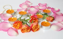 Fine roses and candles Royalty Free Stock Image