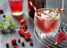 Fine rossa del cocktail delle bacche su sui precedenti scuri Immagini Stock Libere da Diritti