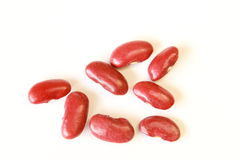 fine rossa del seme del fagiolo nano su fotografia stock
