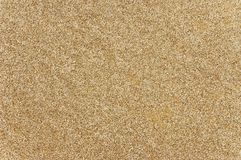 Fine sand texture. Homogeneous texture of fine sea sand stock photography