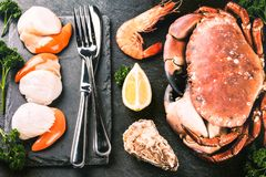 Fine selection of crustacean for dinner. Crab, scallops and oyst royalty free stock images