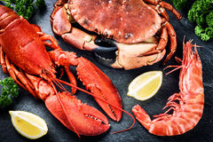 Fine selection of crustacean for dinner. Lobster, crab and jumbo. Shrimp on dark background royalty free stock images