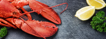 Fine selection of crustacean for dinner. Steamed lobster with le. Mon on dark background stock photo