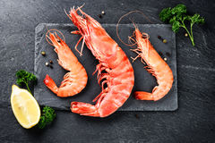 Fine selection of jumbo shrimps for dinner on stone plate Royalty Free Stock Images