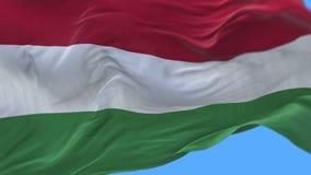 fine senza cuciture 4k su di ondeggiamento lento della bandiera dell'Ungheria in vento Alfa canale incluso archivi video