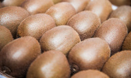 Fine stacked kiwi fruits Royalty Free Stock Images