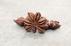 Fine star anis. On wooden background Stock Images
