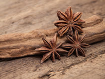 Fine star anis. On wooden background Stock Photography