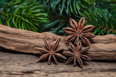 Fine star anis. On wooden background Royalty Free Stock Image