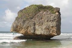 Fine su - Barbados della roccia di Bathsheba Beach Fotografia Stock Libera da Diritti