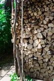 Fine su del taglio della legna da ardere sui ceppi ed impilato in cortile Fotografie Stock Libere da Diritti