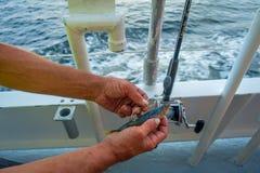Fine su di una maniglia dell'uomo un'esca del pesce con un piccolo pesce, in un giorno di estate delle vacanze al Fort Lauderdale Immagini Stock Libere da Diritti
