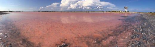 Fine sul cristallo rosa himalayano del sale nello sfondo naturale fotografie stock