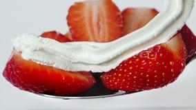 Fine sul mezzo dessert del cucchiaio della fragola con la montatura della crema bianca video d archivio