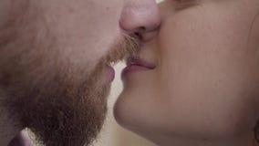 Fine sul ritratto che bacia uomo barbuto e donna graziosa Le belle coppie mostrano l'un l'altro la loro tenerezza amanti video d archivio