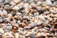 Fine sulle pietre della spiaggia sulla spiaggia Alba di estate sulla costa, isola di Corf?, Grecia Mare ionico della spiaggia wal immagini stock libere da diritti