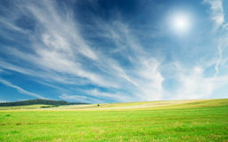 Fine Summer Landscape. Royalty Free Stock Photos