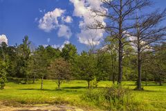 A Really Fine Sunny Day. Photo taken at Flat Rock Park, which is in Columbus, Georgia royalty free stock photography