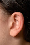 Fine umana dell'orecchio in su Fotografie Stock