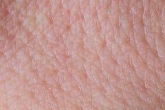 Fine umana di struttura della pelle su Macro della pelle pulita marrone del giovane Fotografia Stock