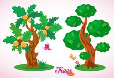 Fine vector trees. Green oak with acorns. Colorful bird, butterfly, flowers, grass and green lawn. Lush foliage. royalty free illustration