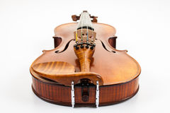 A fine violin viewed from the bottom Stock Photo