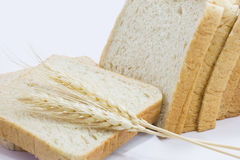 Fine whole wheat breads& wheat Royalty Free Stock Images