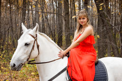 Fine young woman on horseback on white horse Stock Image