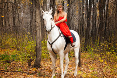 Fine young woman on horseback on white horse Stock Photo