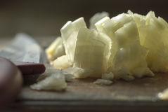 Finely chopped onion. In backlight Royalty Free Stock Photos