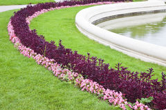 A finely manicured garden Royalty Free Stock Photography