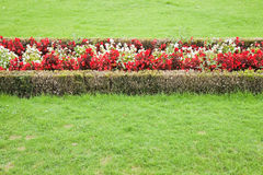 A finely manicured garden Royalty Free Stock Images