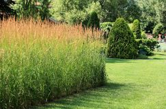 Finely manicured lawn Royalty Free Stock Images