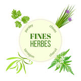 Fines herbes round emblem Stock Images
