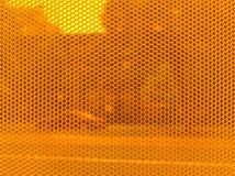 Finestra arancione Fotografie Stock