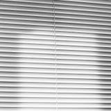 Finestra bianca Ciechi chiusi jalousie immagine stock